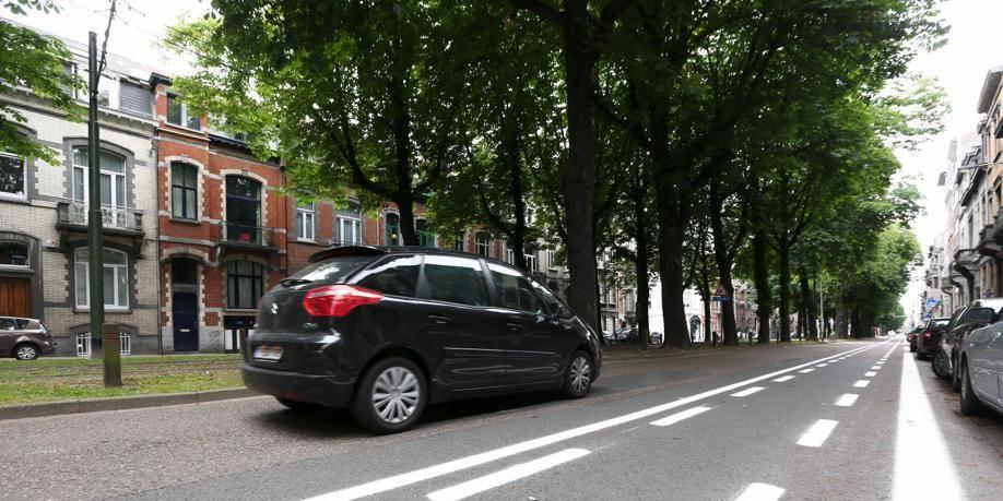 Forest: les comités de quartier sont contre l'élagage drastique de l'avenue Albert