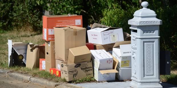 Des voleurs de papier rôdent à Wemmel - La DH
