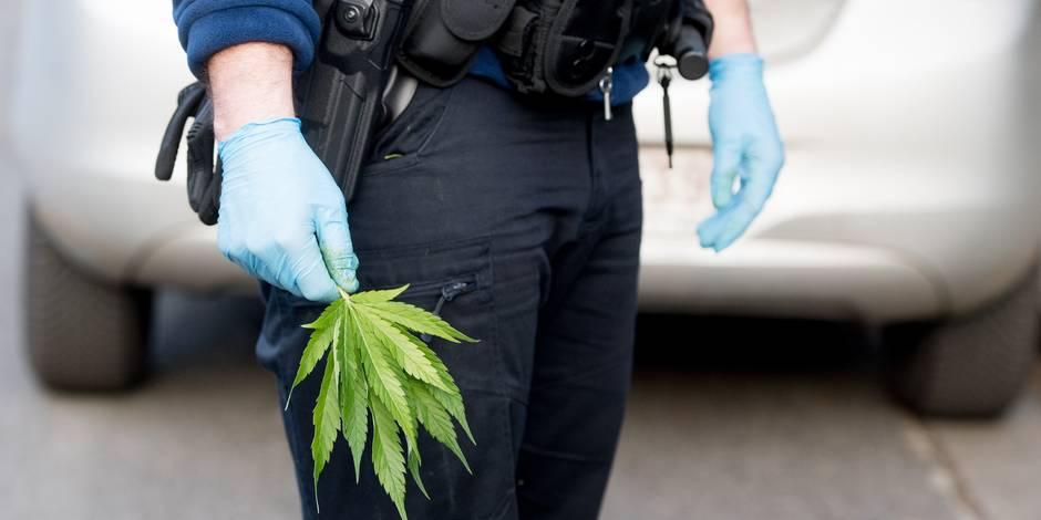 Saisie record de 2,9 tonnes de cannabis sur l'A9 — Aude